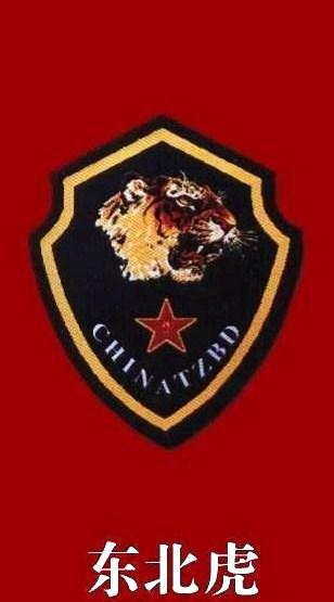 沈阳军区 中国 特种部队 臂章 中国王牌军最新臂章 沈阳-中国军区特图片