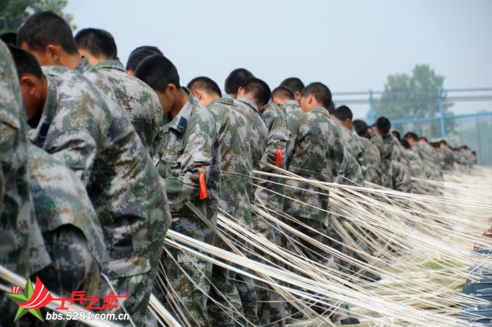 各兵种训练生活照-军人风采贴图-5281论坛,5281网,之